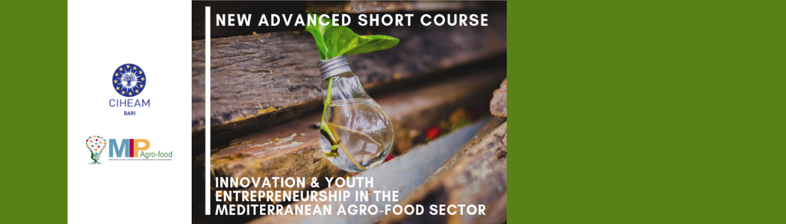 "New Course on ""Innovation & Youth Entrepreneurship In The Mediterranean Agro-Food Sector"""