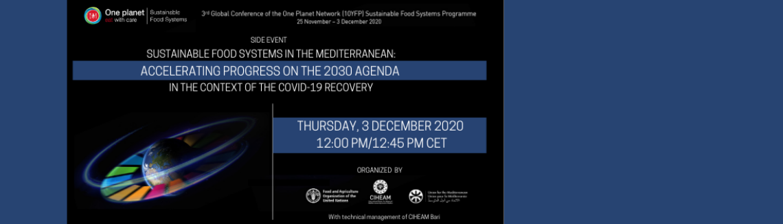 Sustainable Food Systems in the Mediterranean: Accelerating progress on the 2030 Agenda